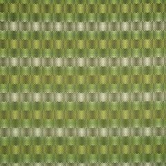 Ombre View | Lime