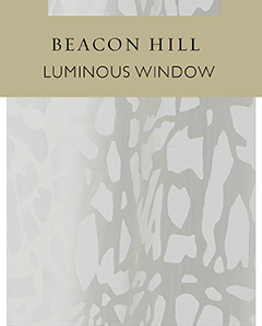 Luminous Window
