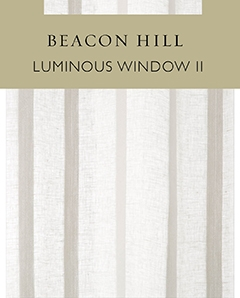 Luminous Window II