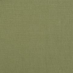 Brushed Linen | Palm