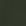 Luxurious Look | Forest