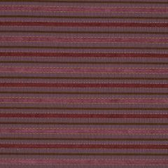 Crinkle Stripe | Currant