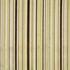 Kings Stripe | Lemongrass