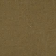 Accent Shades | Twig