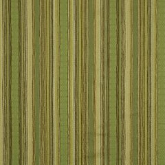 Sierra Stripe | Leaf