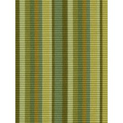 Allie Stripe | Tarragon
