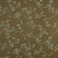 Thale Cress | Light Taupe