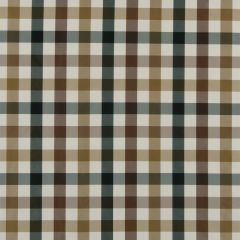 Glory Plaid | Twig