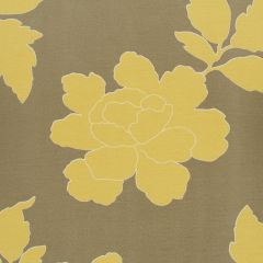 New Peony | Canary Taupe