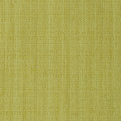 Modern Canvas | Chartreuse