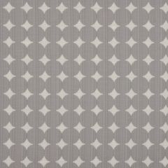 Ikat Dot | Pewter