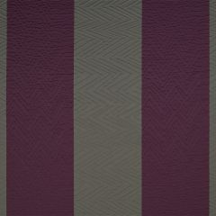 Ziggy Pop | Aubergine