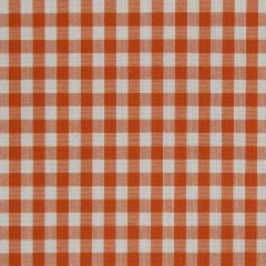 Go Gingham | Watermelon