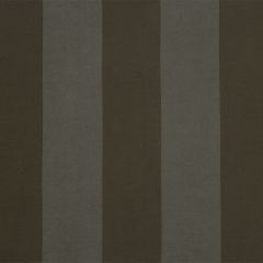 Hampton Stripe | Java