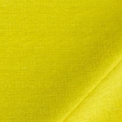Mulberry Silk | Fern