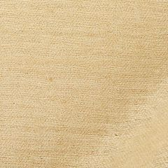 Tussah Silk | Bisque