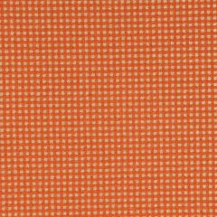Boucle Tape | Chili Coral