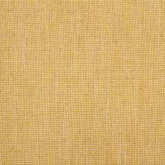 Linen Canvas | Lemongrass