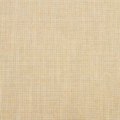 Linen Canvas | Horizon
