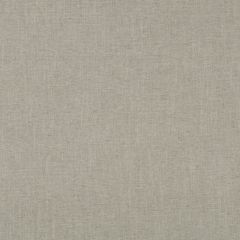 Linen Canvas | Dove Grey
