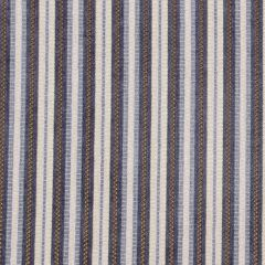 Avenue Stripe | Iris