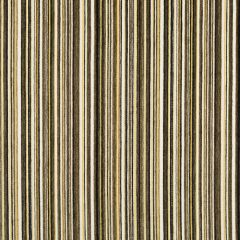 Chroma Stripe | Ink