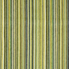 Chroma Stripe | Lime