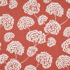 Toile Stems | Coral