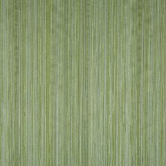Fiero Stripe | Spring Grass