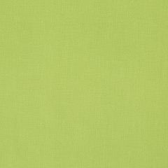 Canvas Texture | Lime