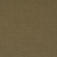 Brushed Linen | Twig