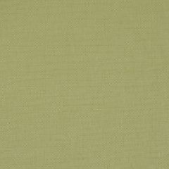 Brushed Linen | Apple Green