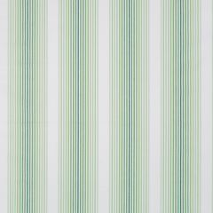 Tivoli Stripe | Palm