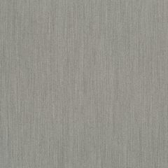 Poplar | Dark Gray