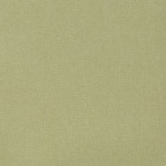 Linen Canvas | Lettuce