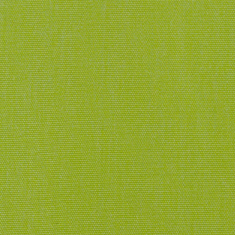 Realistic Lime Fabric